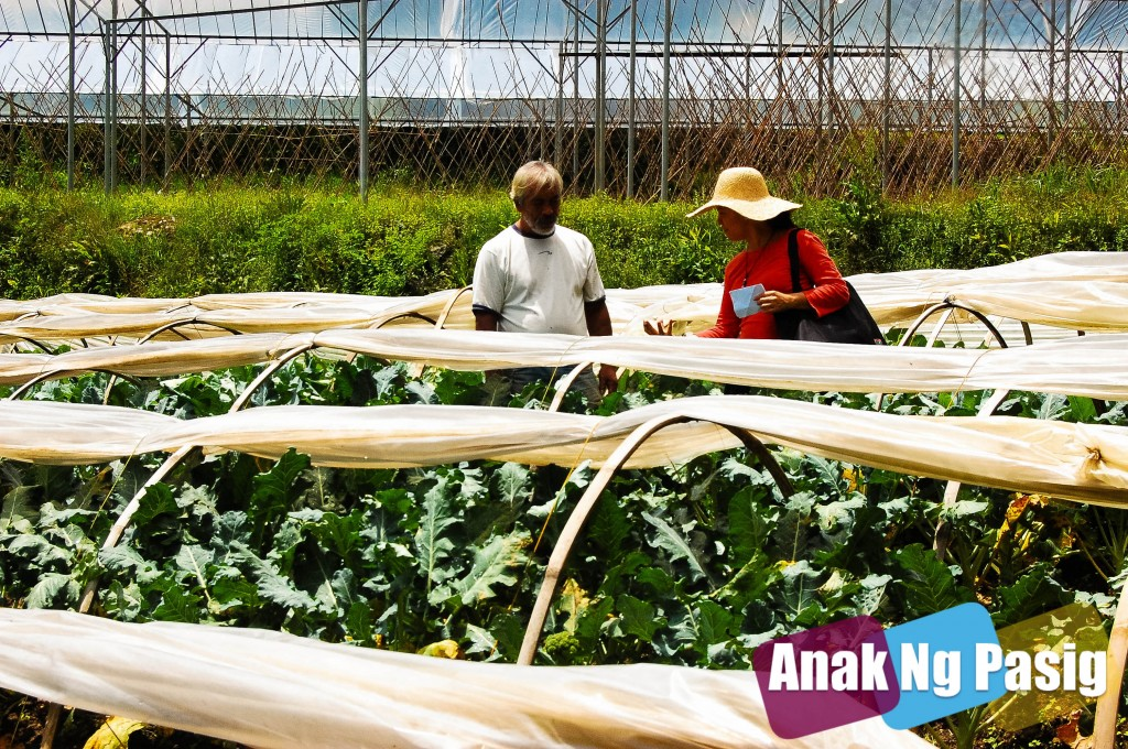 Organic Agriculture in the Philippines Part 1