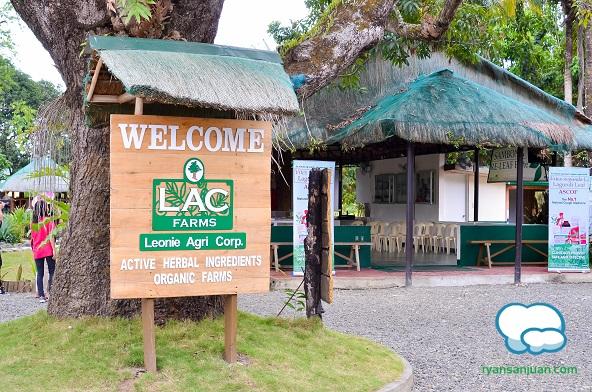 Lagundi Farm